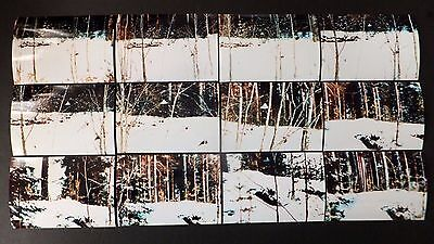 UFO 12 Photo 4X6 1979 Suonenjoki Finland Full In-Sequence Flying Saucer Set Lot