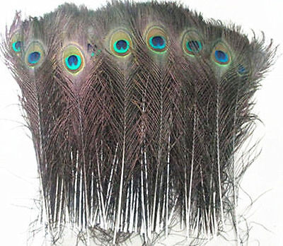 wholesale 10-100pcs beautiful natural peacock feather 25-30cm/10-12 inch