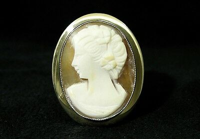Vintage Amco Seashell Lady Profile Cameo Gold Filled Brooch in Original Box