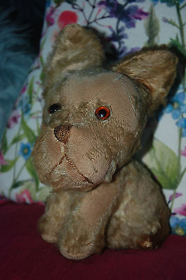 REDUCED!! RARE UNUSUAL Vintage Antique Old Dog Teddy Bear 1920s Merrythought