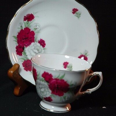 Royal Vale Carnations  Cup and Saucer -