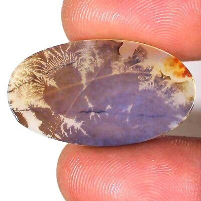 9.95 CTs A++ NATURAL DESIGNER DENDRITE QUARTZ OVAL CABOCHON UNTREATED GEMSTONE