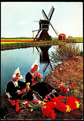 Postcard -Windmill-  Holland In Flower Decoration Posted 1973