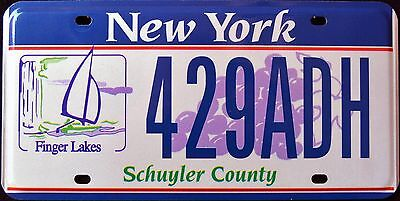 """NEW YORK """" FINGER LAKES - EMPIRE STATE """" NY Graphic License Plate"""