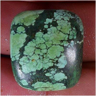 31.55Cts 100% NATURAL TIBET TURQUOISE CUSHION CABOCHON UNTREATED LOOSE GEMSTONES
