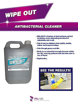 WIPE OUT Professional Strength Antibac Cleaner Kills 99.9% of Bacteria NO BLEACH