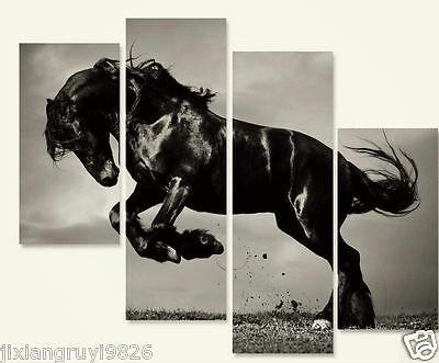 Horse Modern Decor Canvas Prints no Framed