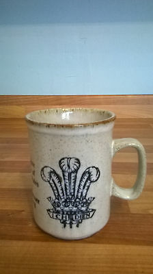 Dunoon commemorative Mug 1981 Marriage of Prince of Wales & Lady Diana Spencer