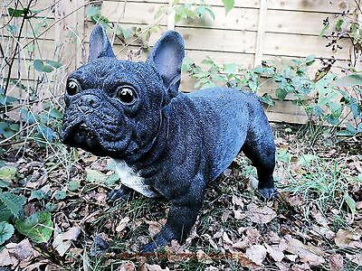 Life Size French Bulldog For Home & Garden. Realistic, Lovely, Vivid Arts