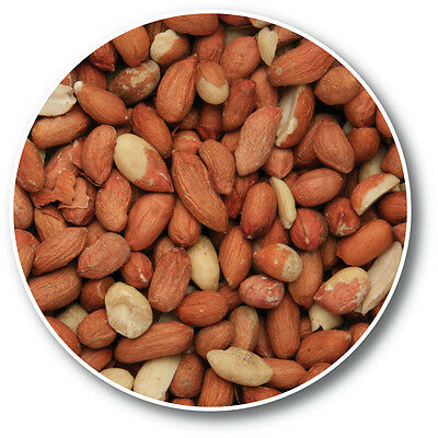 25kg Premium Whole Peanuts for Wild Bird / Garden Bird Nuts Feed 25 kg