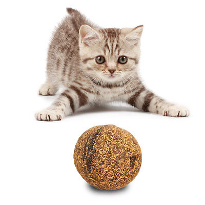 Outdoor Sport Funny 20g Pets Dogs Cats Car Catnip Ball 3.2 CM Fun Playing Toy GA
