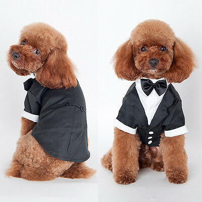 Small Pet Dog Clothing Prince Wedding Suit Tuxedo Bow Tie Puppy Clothes Outwear
