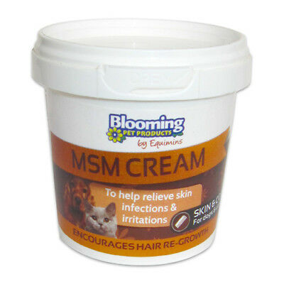 Equimins Blooming Pet Msm Cream - 100 g Jar - First Aid & Healthcare