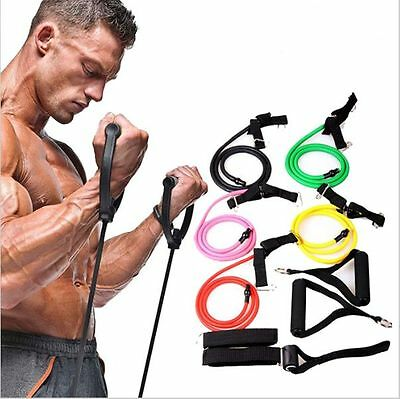Fitness Resistance Bands Rope Exerciese  Elastic Workout Lose weight gain muscle