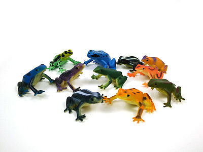 Set of plastic like toy frogs, lot of 11, Dendrobates