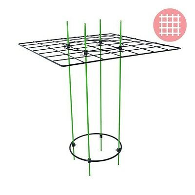 Grow1 Scrog Kit Trellis Webbing Plant Growing Net Support Train Vine Control