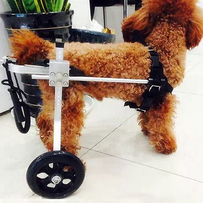 Mobility Light Weight Dog Wheelchair Great fit for 18-40lbs Dogs Pet Health Care