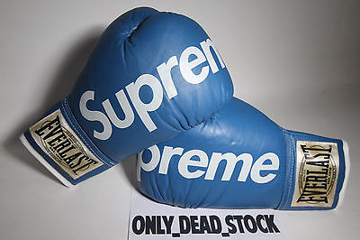 Everlast X Supreme Boxing Gloves Blue Punching Bag Tyson Ali Kermit Ball Heavy