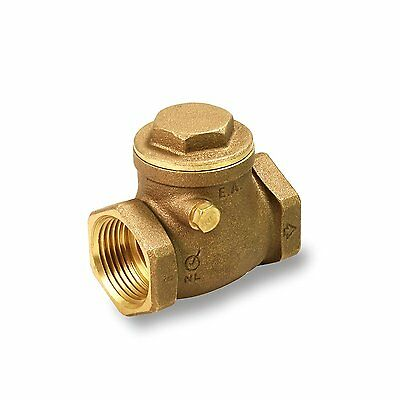Everflow Supplies 210T001-NL IPS Threaded Brass Swing Check Valve 1 Inch - Lead