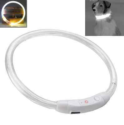 Waterproof LED Light Safety Pet Dog USB Switch Collar Leash Rechargeable
