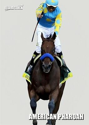 American Pharoah Future Stock Kentucky Derby RC - Silver Variation - Serial 3/10