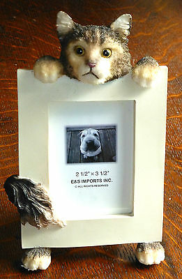 """Maine Coon 6 1/2 """" High Resin, Handpainted Frame Holds 2 1/2"""" x 3 1/2""""  Photo"""