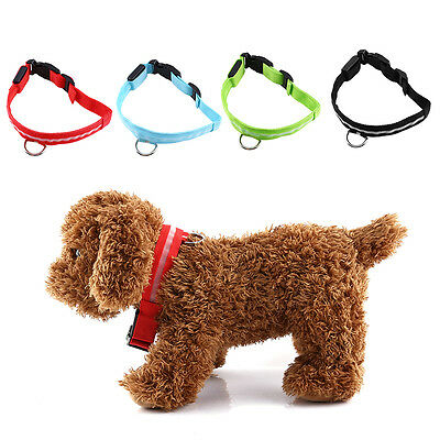 Adjustable USB Rechargeable LED Multicolor Pet Dog Puppy Collar Night Flash CL