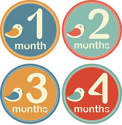 Personalised Monthly Baby Stickers, Milestone Stickers, Baby Shower Gift_B014