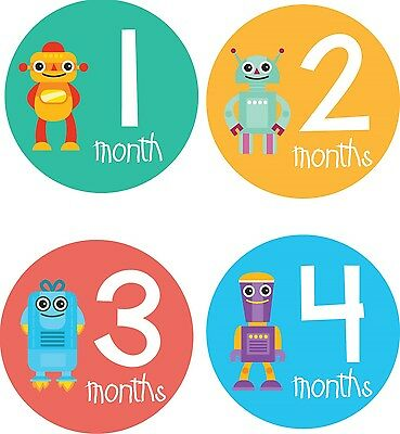 Personalised Monthly Baby Stickers, Milestone Stickers, Baby Shower Gift_B037
