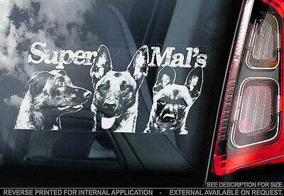 Belgian Malinois - Car Window Sticker - Dog Sign -V12