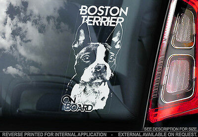 Boston Terrier - Car Window Sticker - Dog Sign -V01