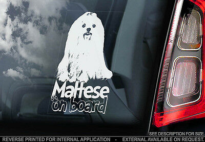 Maltese Terrier - Car Window Sticker - Dog Sign -V02