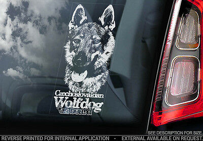 Czechoslovakian Wolfdog - Car Window Sticker - Dog Sign -V08