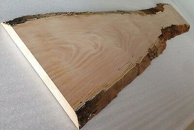 Sweet Chestnut - Live / Waney Natural Edge Timber Woodwork Woodcraft Plinth