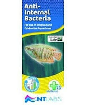 NT Labs Tropical Coldwater Fish Aquarium No 10 Anti Internal Bacteria Remedy
