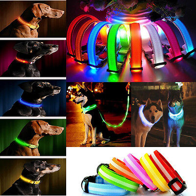 LED Pet Dog Collar Rechargeable/Non-Rechargeable Adjustable Flashing Safety UK
