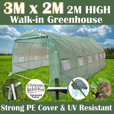 3M x 2M Walk-In Greenhouse Garden Shed PE Cover with Galvanised Frame