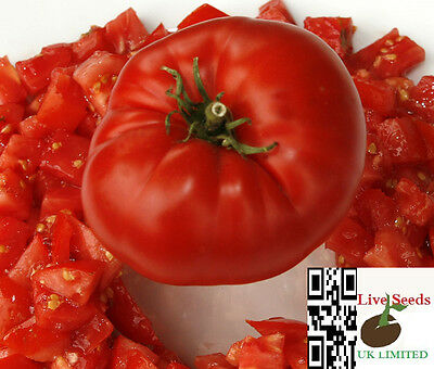 Delicious record beater heirloom bright red giant meaty beefsteaktomato 20 seeds