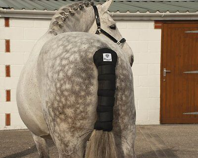 Rhinegold Cotton Quilted Tailguard - Various Colours - One Size