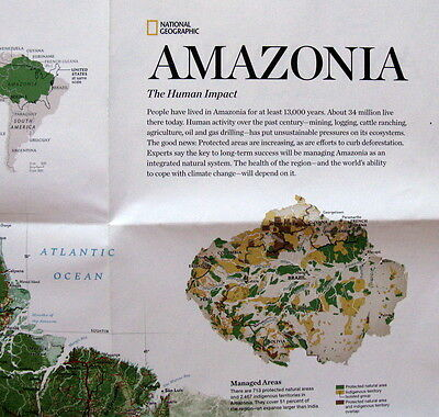Amazonia - National Geographic Map / Poster Nov 2015