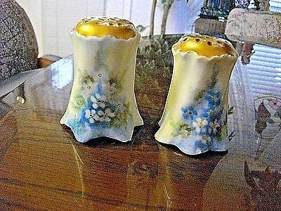 Antique Salt & Pepper Shakers Hand Painted Circa 1940's Forgetmeknot Flowers
