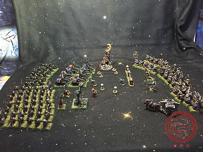 25mm Warhammer DPS painted Orcs & Goblins and Dwarfs The battle of bones OD100