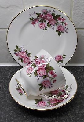 Queen Anne English Bone China Tea Trio Cup Saucer Plate Pink Roses