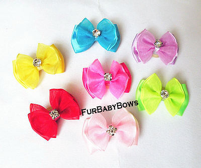 5 YORKIE Dif Color Crystal Puppy dog grooming pet Bows Shih-tzu  Maltese