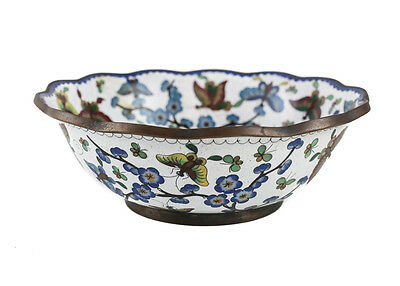 Chinese Cloisonne Butterfly Enamel Scalloped Rim Bowl. White ground, c1900