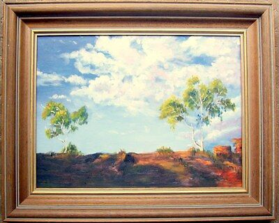 """Framed signed oil on canvas/board """"The Red Earth of Alice, NT"""""""