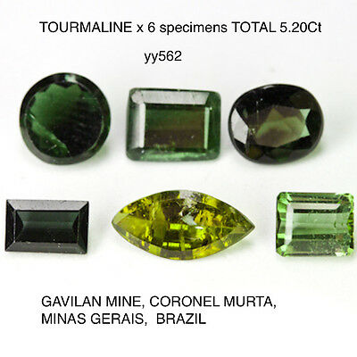NATURAL MINED SUITE OF TOURMALINE x 6 SPECIMENS TOTAL 5.20Ct YY562