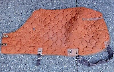 68 Big D All American Pony Stable Blanket Leg Straps Russet Orange & Brown (#44)