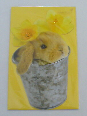 Papyrus Easter Greeting Card