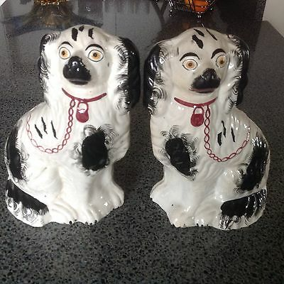 Pair of Victorian Staffordshire Flat Back Dogs